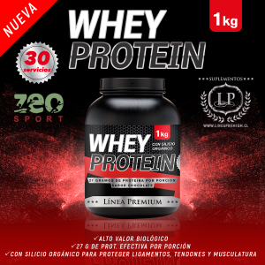 WHEY PROTEIN SI2